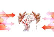 Sclerosi Multipla tra medicina e psicologia