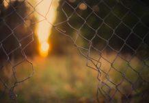 Sclerosi Multipla e disperazione